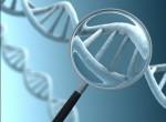 Преимплантационная генетическая диагностика при ЭКО