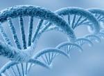 Неинвазивные генетические тесты Prenetix и Panorama